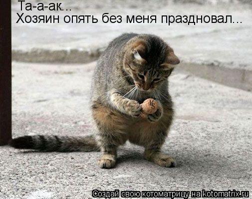 Котоматрица: Та-а-ак...  Хозяин опять без меня праздновал...