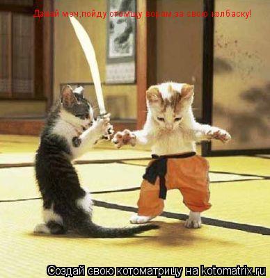 Котоматрица: Давай меч,пойду отомщу ворам,за свою колбаску!