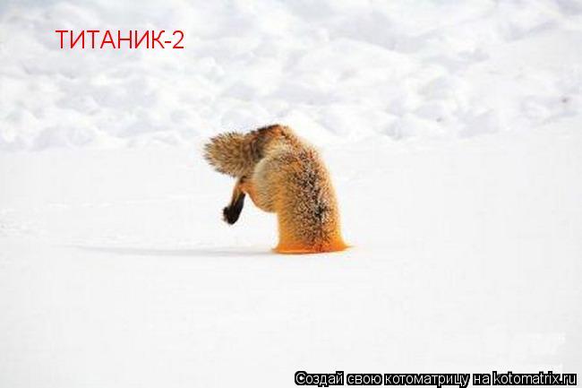Котоматрица: ТИТАНИК-2