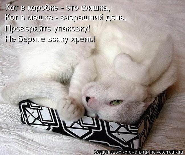 Котоматрица: Кот в коробке - это фишка,  Кот в мешке - вчерашний день, Проверяйте упаковку! Не берите всяку хрень!