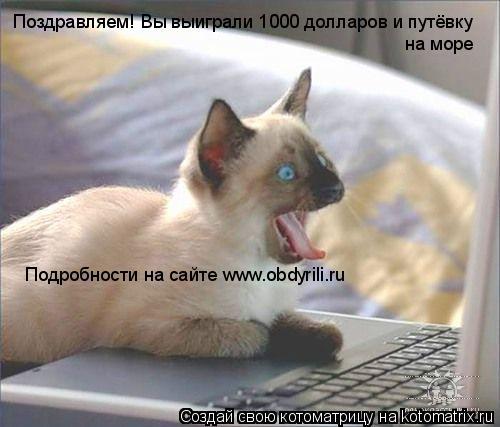 Котоматрица: Поздравляем! Вы выиграли 1000 долларов и путёвку на море Подробности на сайте www.obdyrili.ru