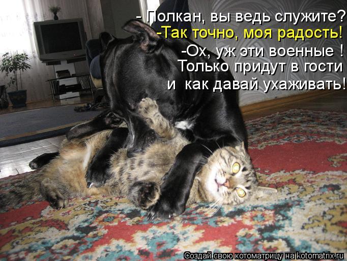 Котоматрица: -Так точно, моя радость! -Ох, уж эти военные !  Только придут в гости - Полкан, вы ведь служите? и  как давай ухаживать!