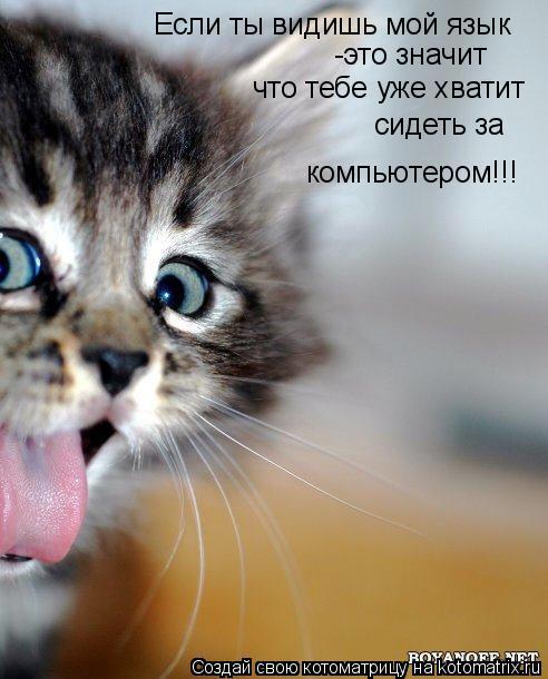 Котоматрица: Если ты видишь мой язык -это значит  что тебе уже хватит  сидеть за  компьютером!!!