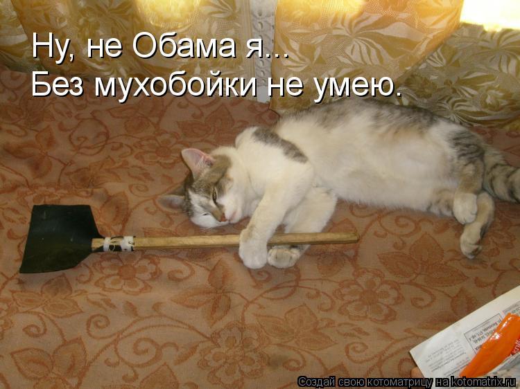 Котоматрица: Ну, не Обама я... Без мухобойки не умею.