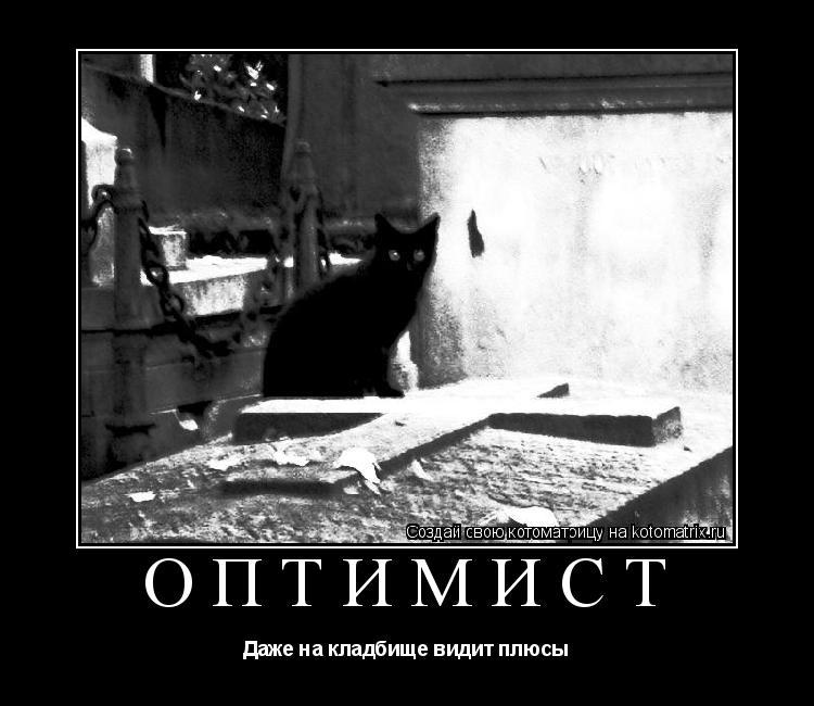Котоматрица: Оптимист Даже на кладбище видит плюсы