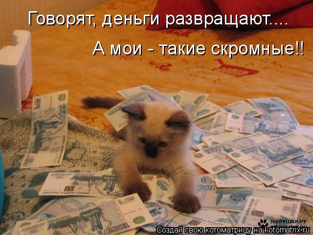 Котоматрица: Говорят, деньги развращают.... А мои - такие скромные!!