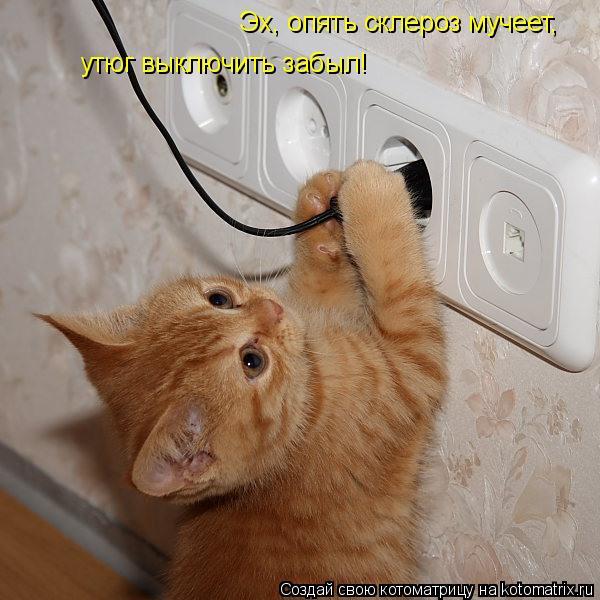 Котоматрица: Эх, опять склероз мучеет,  утюг выключить забыл!