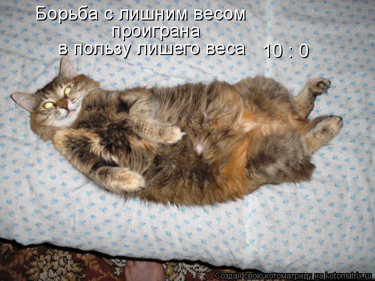 Котоматрица: Борьба с лишним весом проиграна  в пользу лишего веса 10 : 0