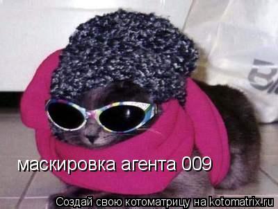 Котоматрица: маскировка агента 009