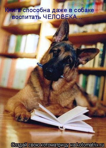 Котоматрица: Книга способна даже в собаке  воспитать ЧЕЛОВЕКА...