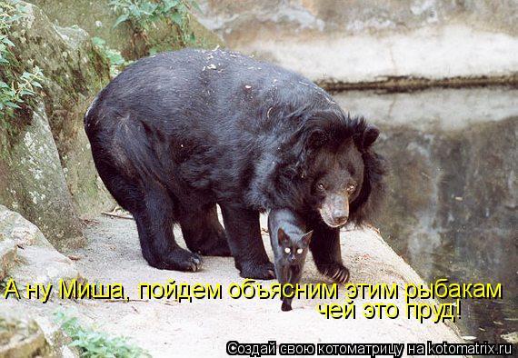Котоматрица: А ну Миша, пойдем объясним этим рыбакам чей это пруд!
