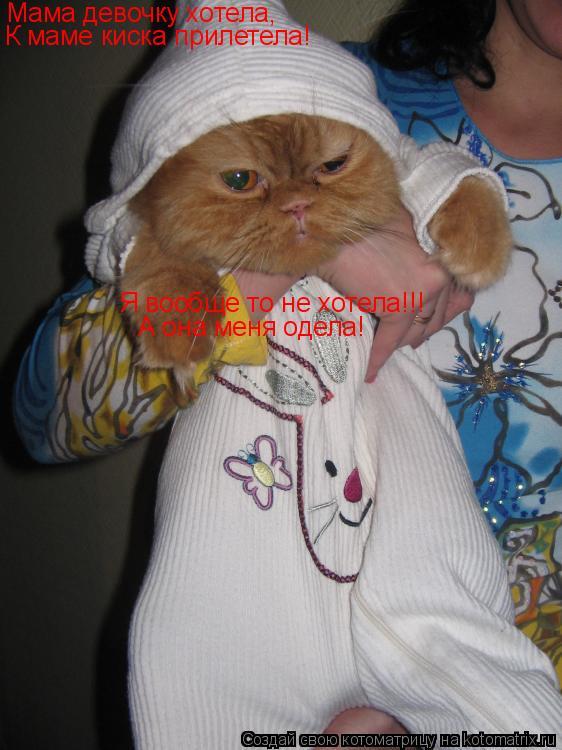 Котоматрица: Мама девочку хотела, К маме киска прилетела! Я вообще то не хотела!!! А она меня одела!