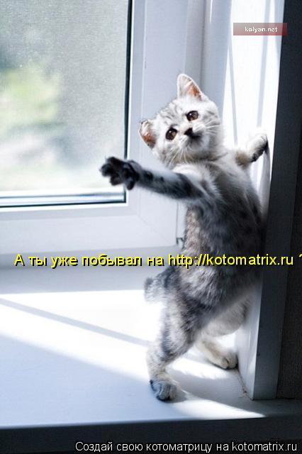 Котоматрица: А ты уже побывал на http://kotomatrix.ru ?