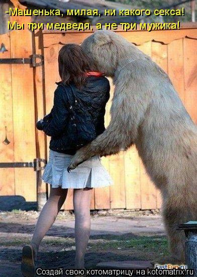 Котоматрица: -Машенька, милая, ни какого секса!  Мы три медведя, а не три мужика!
