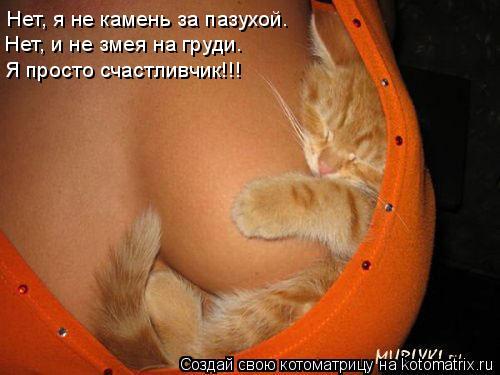 Котоматрица: Нет, я не камень за пазухой. Нет, и не змея на груди. Я просто счастливчик!!!