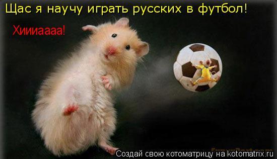 Котоматрица: Щас я научу играть русских в футбол!  Хиииаааа!