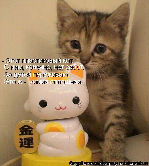 Котоматрица: Это ж -  химия сплошная... За детей переживаю... - Этот пластиковый кот... С ним, конечно, нет забот.