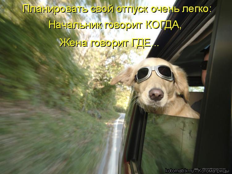 Котоматрица: Планировать свой отпуск очень легко: Начальник говорит КОГДА, Жена говорит ГДЕ...