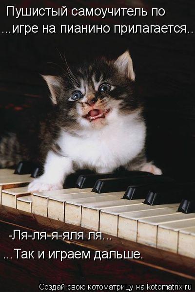 Котоматрица: Пушистый самоучитель по ...игре на пианино прилагается... -Ля-ля-я-яля ля... ...Так и играем дальше.
