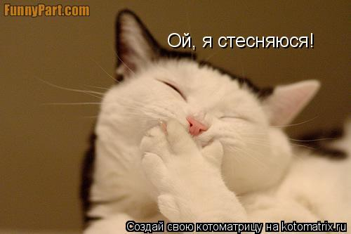 Котоматрица: Ой, я стесняюся!