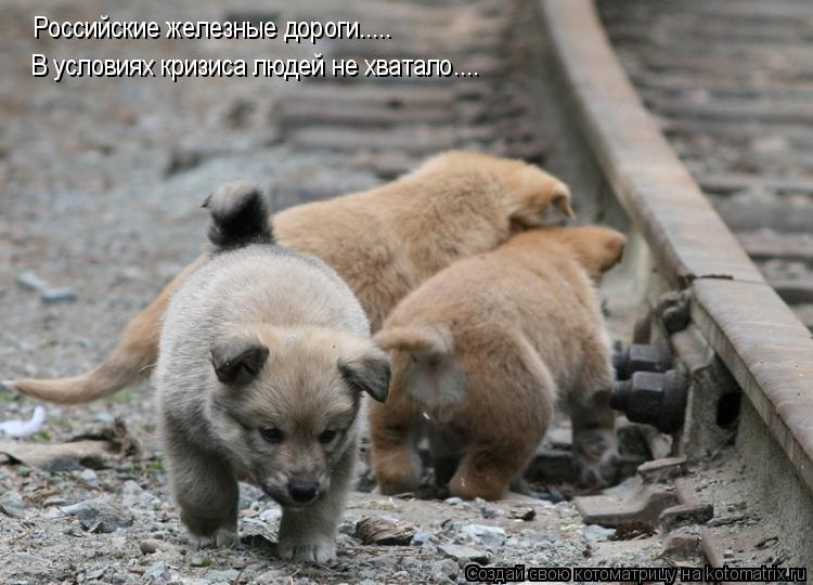 Котоматрица: Российские железные дороги.....  В условиях кризиса людей не хватало....