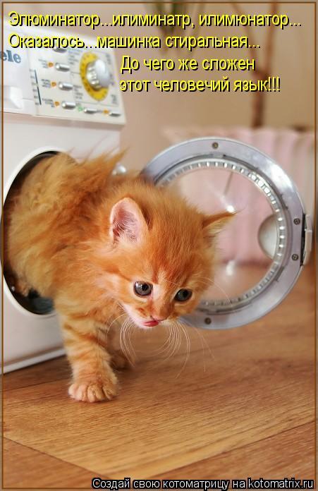Котоматрица: Элюминатор...илиминатр, илимюнатор... Оказалось...машинка стиральная... До чего же сложен этот человечий язык!!!