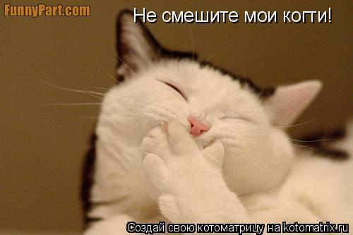 Котоматрица: Не смешите мои когти!