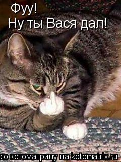 Котоматрица: Фуу! Ну ты Вася дал!