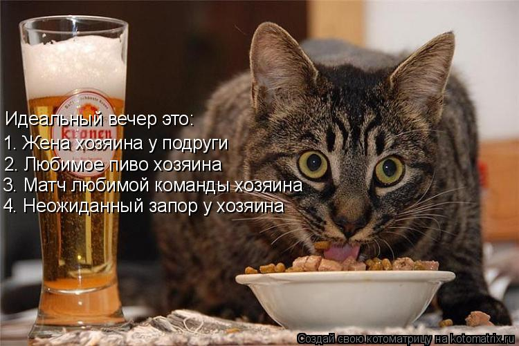 Котоматрица: Идеальный вечер это: 1. Жена хозяина у подруги 2. Любимое пиво хозяина 3. Матч любимой команды хозяина 4. Неожиданный запор у хозяина