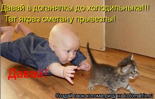 Котоматрица: Давай в доганялкы до холодильныка!!! Тат якраз сметану прывезлы! Давай!