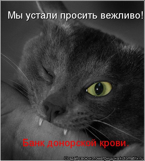 Котоматрица: Мы устали просить вежливо! Банк донорской крови.