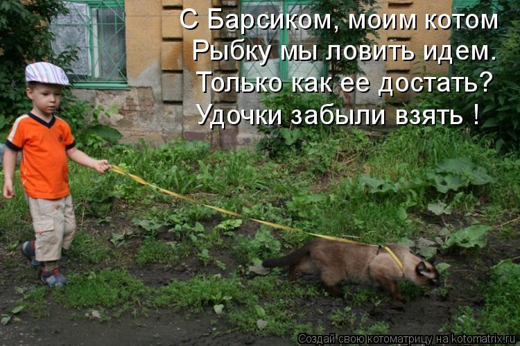 Котоматрица: С Барсиком, моим котом Рыбку мы ловить идем. Только как ее достать? Удочки забыли взять !