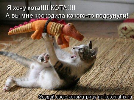 Котоматрица: Я хочу кота!!!! КОТА!!!! А вы мне крокодила какого-то подсунули!