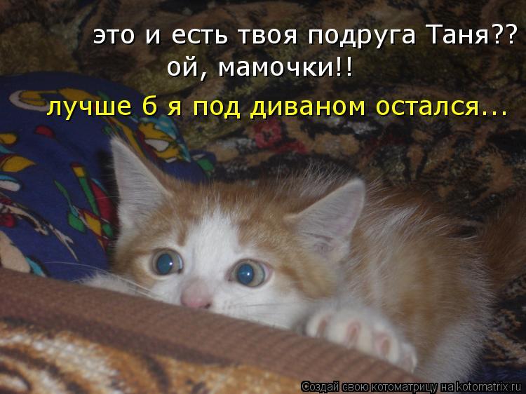 Котоматрица: это и есть твоя подруга Таня??  ой, мамочки!!  лучше б я под диваном остался...