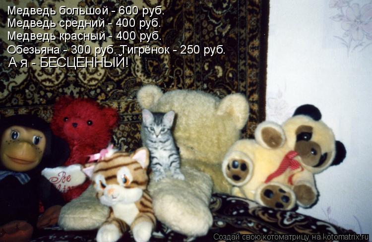 Котоматрица: Медведь большой - 600 руб. Медведь средний - 400 руб. Медведь красный - 400 руб. Обезьяна - 300 руб. Тигрёнок - 250 руб. А я - БЕСЦЕННЫЙ!
