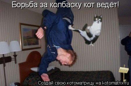 Котоматрица: Борьба за колбаску кот ведёт!
