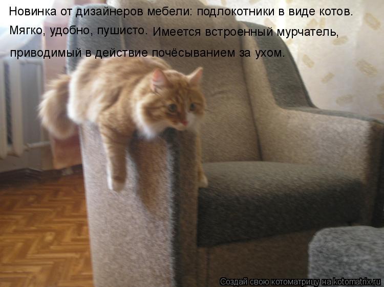 Котоматрица: Новинка от дизайнеров мебели: подлокотники в виде котов. Мягко, удобно, пушисто. Имеется встроенный мурчатель,  приводимый в действие почёс