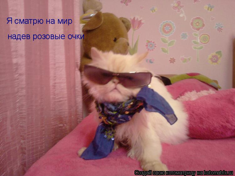 Котоматрица: Я сматрю на мир  надев розовые очки