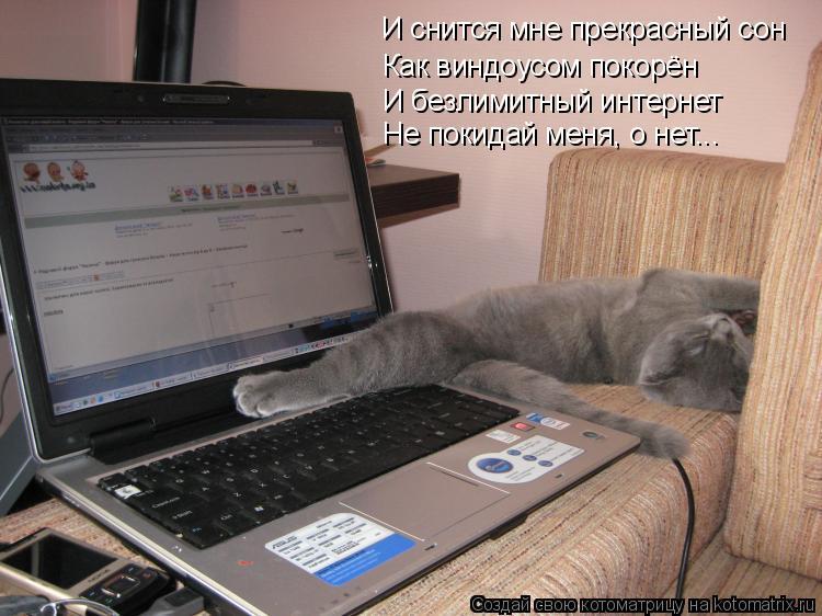 Котоматрица: И снится мне прекрасный сон Как виндоусом покорён И безлимитный интернет Не покидай меня, о нет...