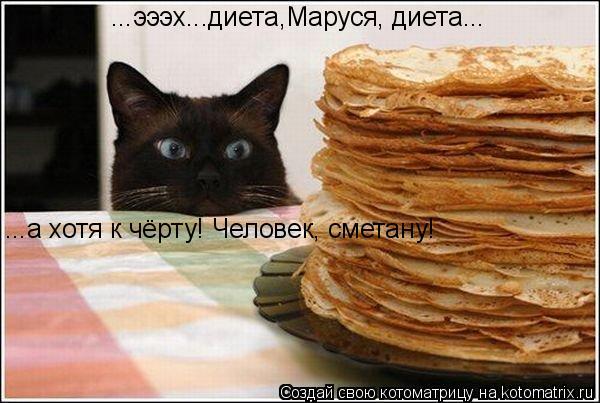 Котоматрица: ...эээх...диета,Маруся, диета... ...а хотя к чёрту! Человек, сметану!