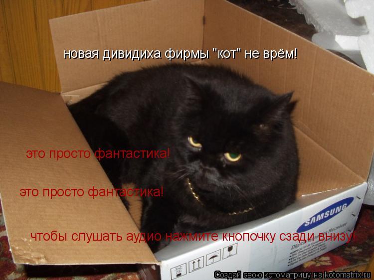 """Котоматрица: новая дивидиха фирмы """"кот"""" не врём! это просто фантастика!  это просто фантастика!  чтобы слушать аудио нажмите кнопочку сзади внизу!"""