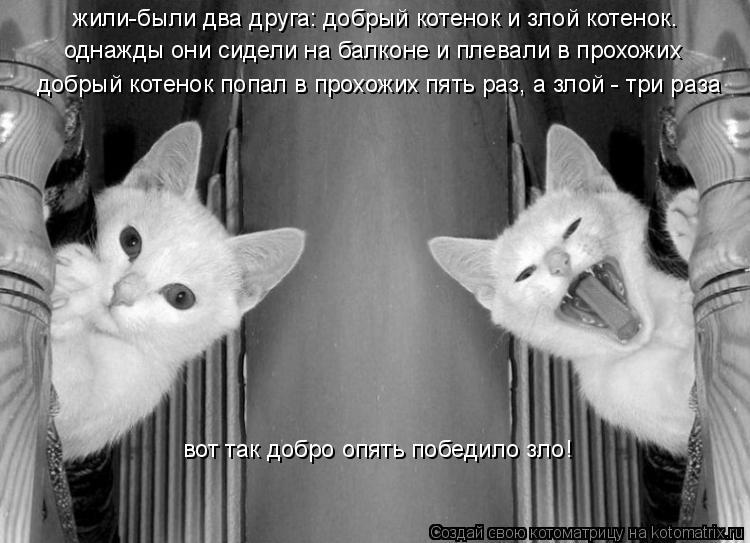Котоматрица: жили-были два друга: добрый котенок и злой котенок. однажды они сидели на балконе и плевали в прохожих добрый котенок попал в прохожих пять