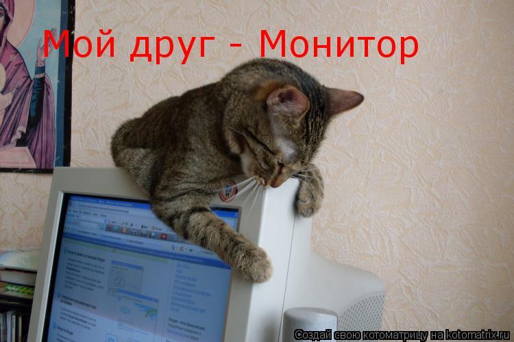 Котоматрица: Мой друг - Монитор