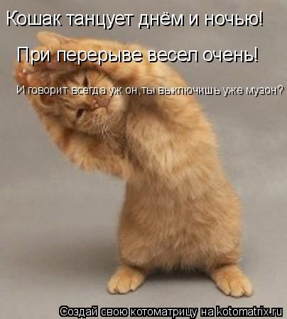 Котоматрица: Кошак танцует днём и ночью! При перерыве весел очень! И говорит всегда уж он,ты выключишь уже музон?