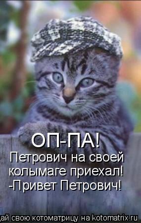 Котоматрица: ОП-ПА! Петрович на своей колымаге приехал! -Привет Петрович!