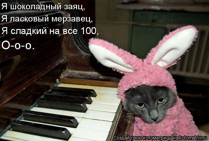Котоматрица: Я шоколадный заяц, Я ласковый мерзавец, Я сладкий на все 100, О-о-о.