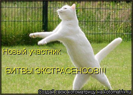 Котоматрица: Новый участник  БИТВЫ ЭКСТРАСЕНСОВ!!!