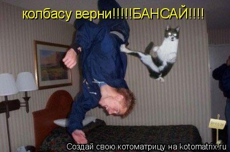 Котоматрица: колбасу верни!!!!!БАНСАЙ!!!!