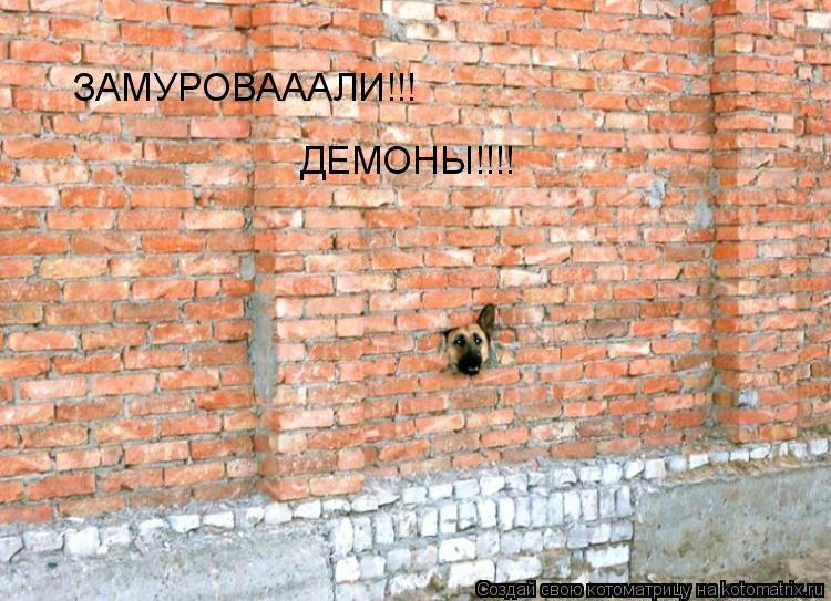 Котоматрица: ЗАМУРОВАААЛИ!!! ДЕМОНЫ!!!!
