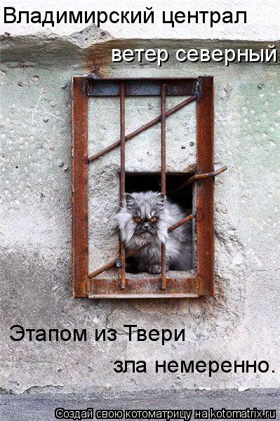 Котоматрица: ветер северный Владимирский централ  Этапом из Твери зла немеренно.